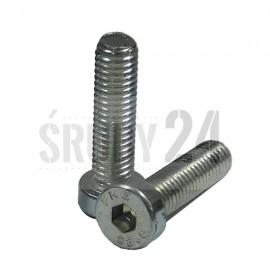 Śruba z łbem walcowym obniżonym DIN 7984 PG kl. 08.8 ocynk galwaniczny